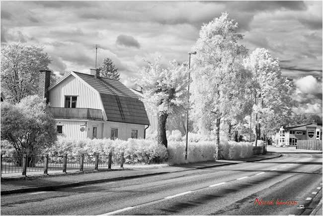 rural scene in BW infrared photography by Ahmed Kassim ©
