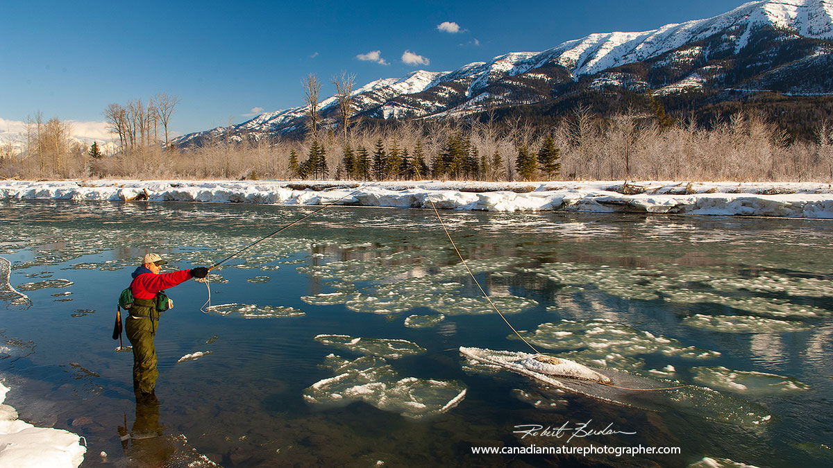 Fly fishing on the Elk River in winter by Robert Berdan ©