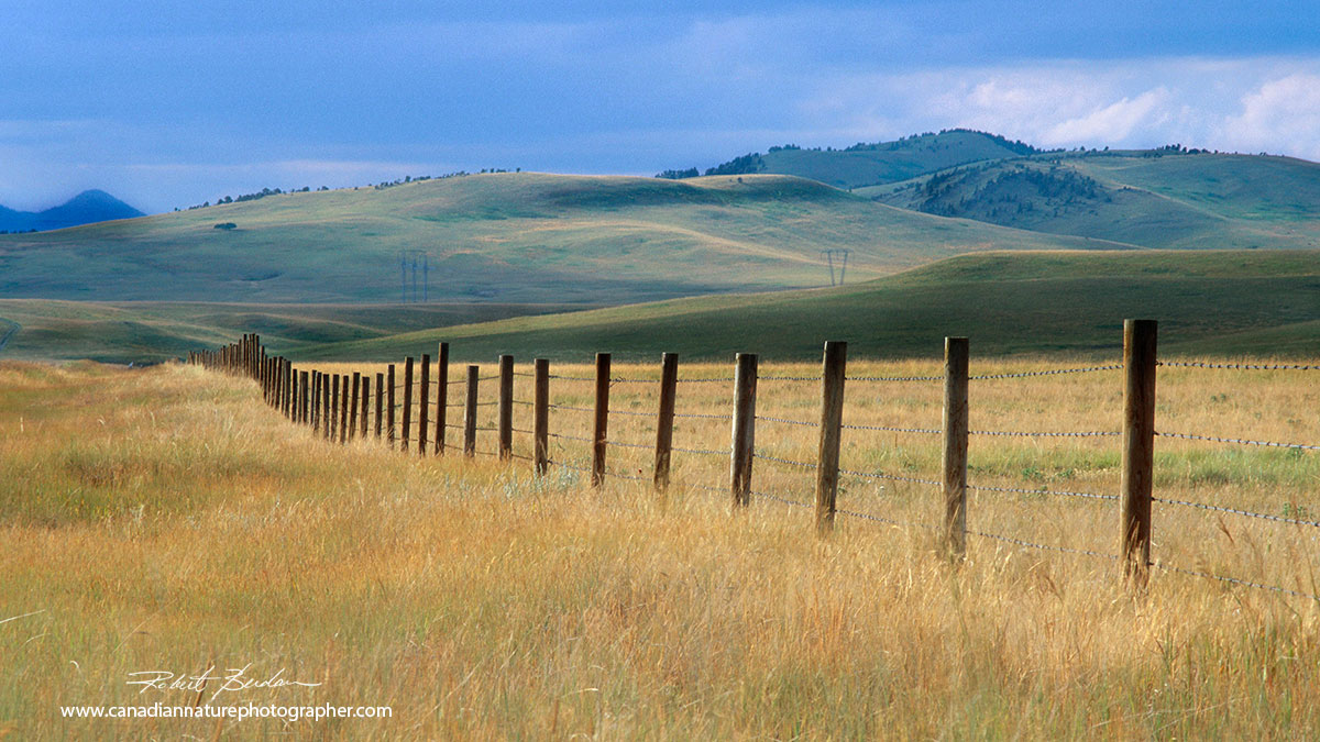 Foothills and the Whale back region in souther Alberta next to highway 22 Robert Berdan ©