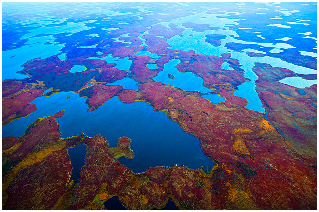 Tundra viewed from float plane showing lakes extending to the horizon photo by Robert Berdan ©