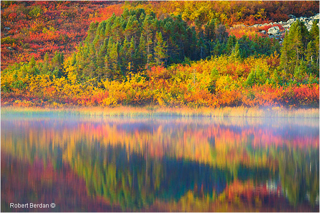 Autumn colours on tundra reflected in small lake at Peterson's Point Lake Lodge by Robert Berdan ©