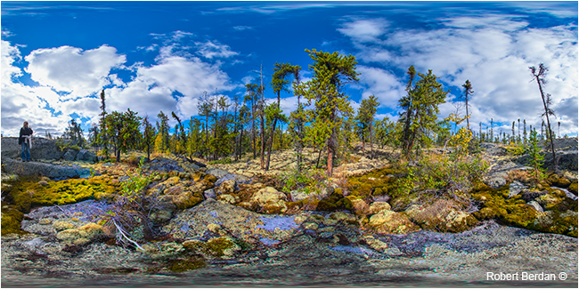 Prelude Territorial park  hiking trail panorama by Robert Berdan ©