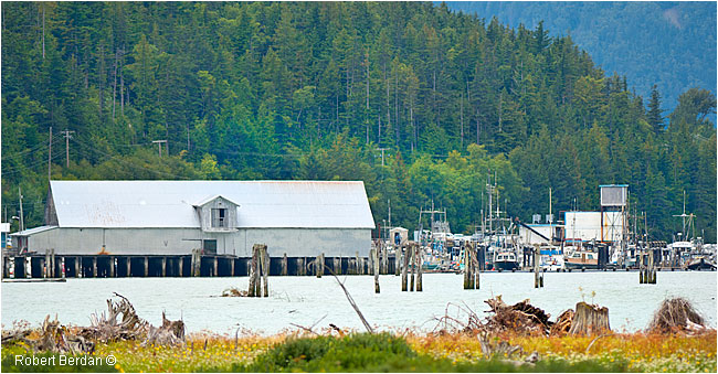 Town dock and marina in Bella Coola by Robert Berdan ©