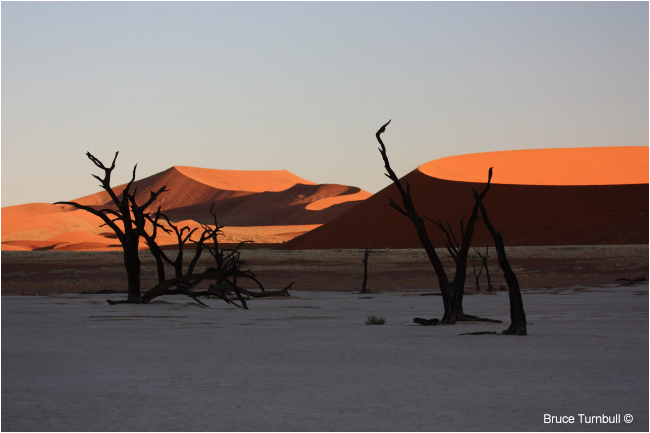 Early morning at Deadvlei, Sossusvlei, Namibia by Bruce Turnbull ©