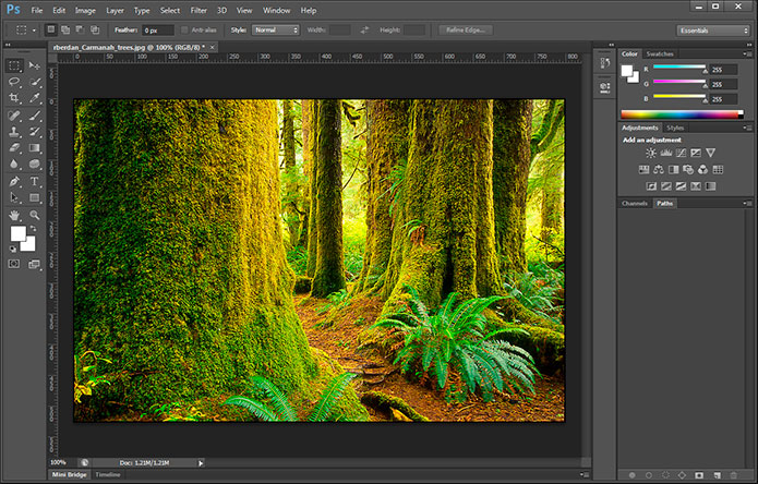 Adobe Photoshop CS6 interface screen shot