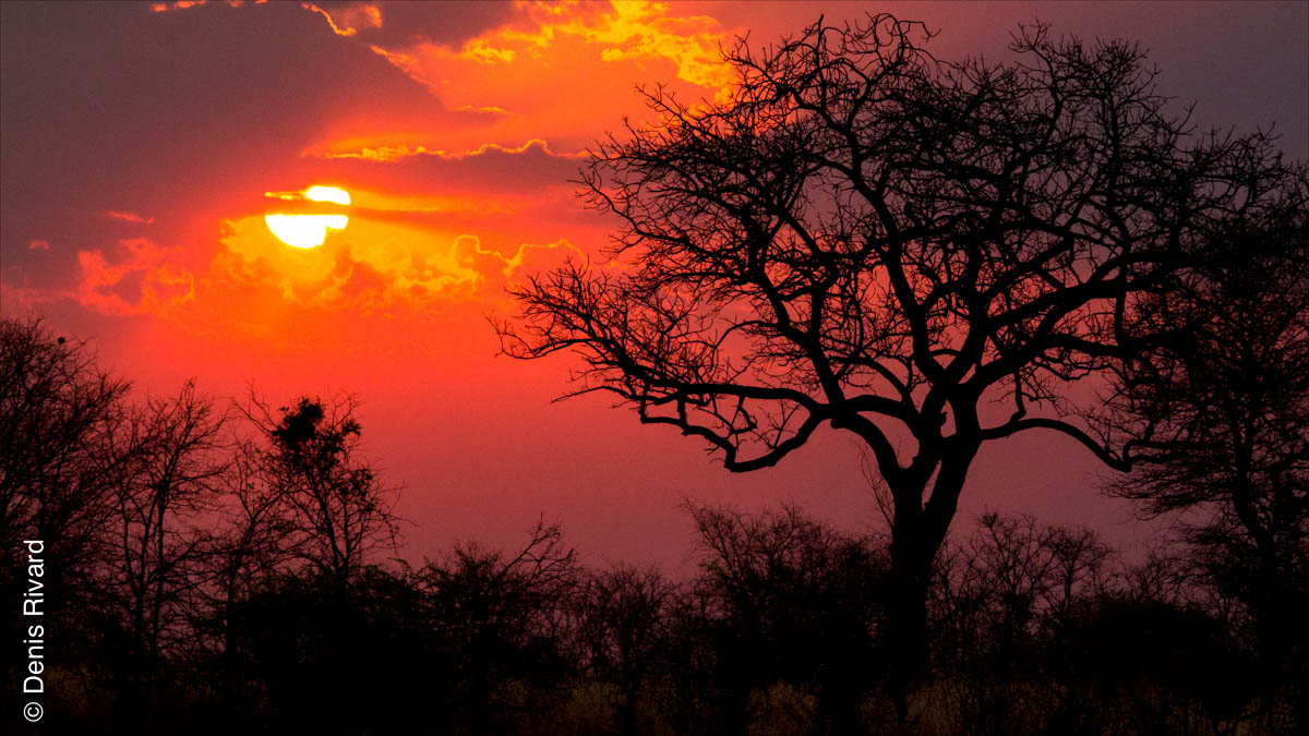 Sunset at Three Baobabs Camp by Marie-France and Denis Rivard ©