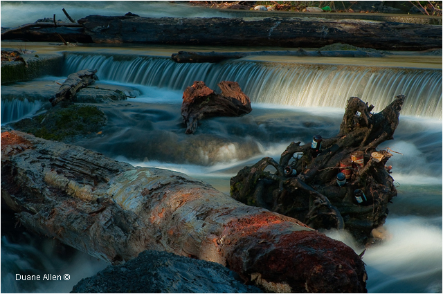 Conflict at Skutz Falls by Duane Allen ©