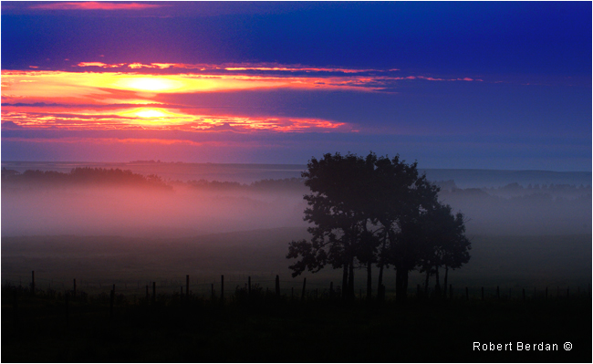 Fog in field at sunrise by Robert Berdan ©