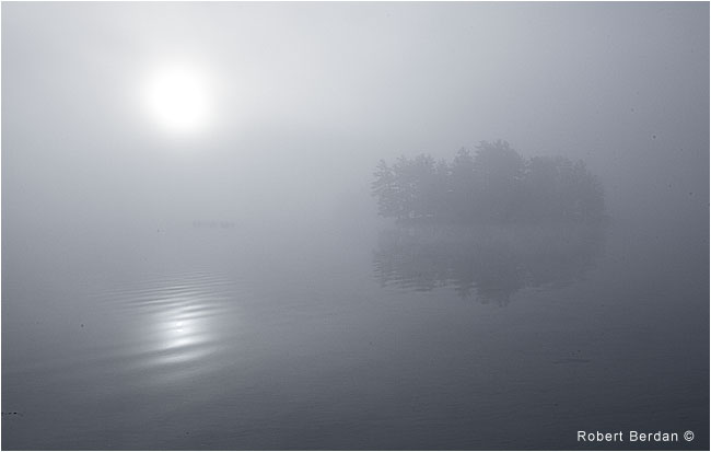Island in fog, Lake of the Woods, Ontario by Robert Berdan ©
