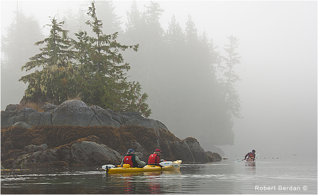 West coast kayakers in fog by Robert Berdan ©