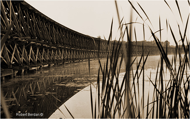 Hog Bay Trestle 1 972 by Robert Berdan ©
