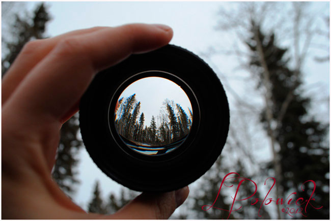 Fisheye photograph of Kananaskis by Lauren Polowick ©