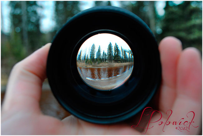 Fisheye photograph by Lauren Polowick ©