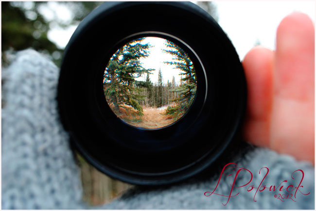 Fisheye photograph of Priddis by Lauren Polowick ©