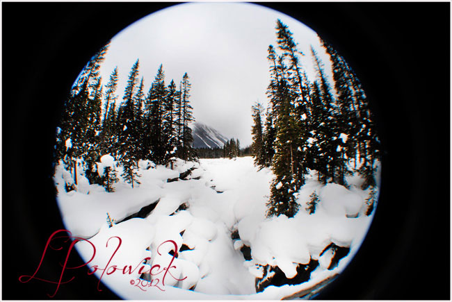 Fisheye photography of Numa Falls, BC by Lauren Polowick ©