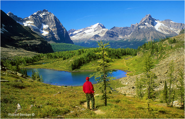 Hiker on the Opapin Pleateau, Lake O'hara in Yoho National Park, BC by Robert Berdan ©