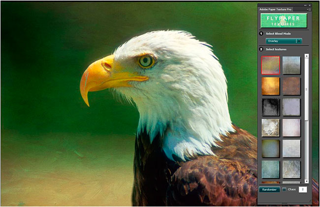 Eagle with paper textures pro background by Robert Berdan