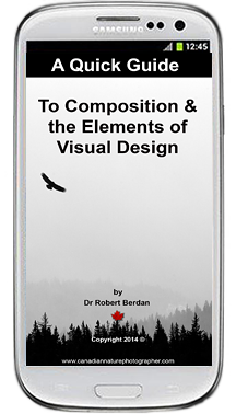 A Quick guide to the Composition and the Elements of Visual Design by Robert Berdan ©