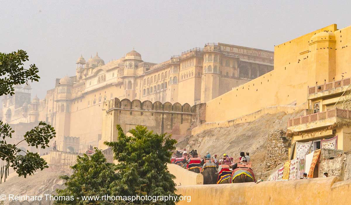 Elephant ride up to the huge Amber Fort in Jaipur  by Reinhard Thomas ©