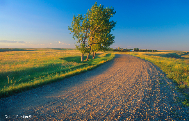 Road next to Writing on Stone Provincial park, AB by Robert Berdan ©