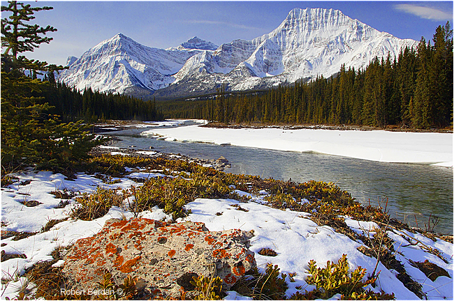 Mt. Fryatt and Athabasica river by Robert Berdan ©