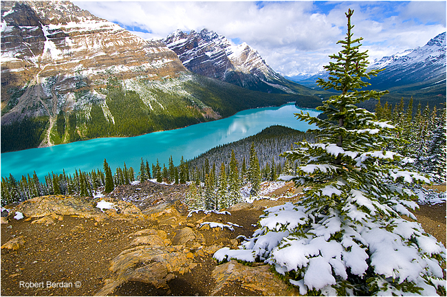 Peyto Lake summer snow fall by Robert Berdan ©