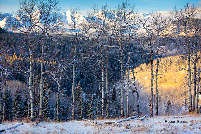 Sheep River Sanctuary Windy Point at sunrise by Robert Berdan ©