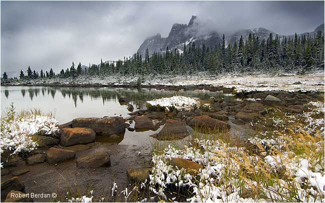Fresh snow in the Tonquin Valley by Robert Berdan ©