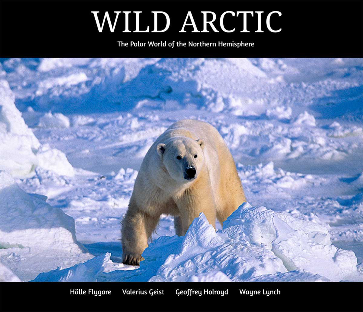 Wild Arctic E book cover by Halle Flygare