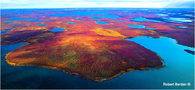 Tundra aerial photograph by Robert Berdan ©