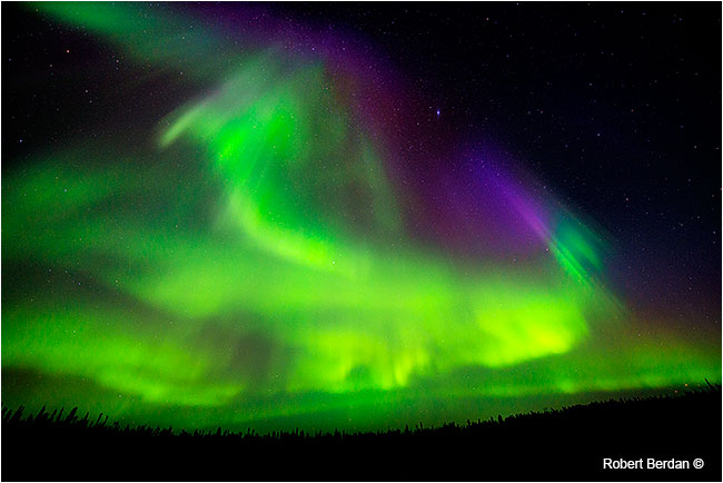 Northern lights at Prelude lake Northwest Territories by Robert Berdan ©