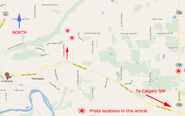 Map of shooting locations near Cochrane AB