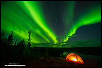 Aurora Borealis and tent, Ingraham trail outside Yellowknife, NT by Robert Berdan