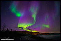 Aurora Borealis over the Ingraham Trail outside Yellowknife, NT by Robert Berdan