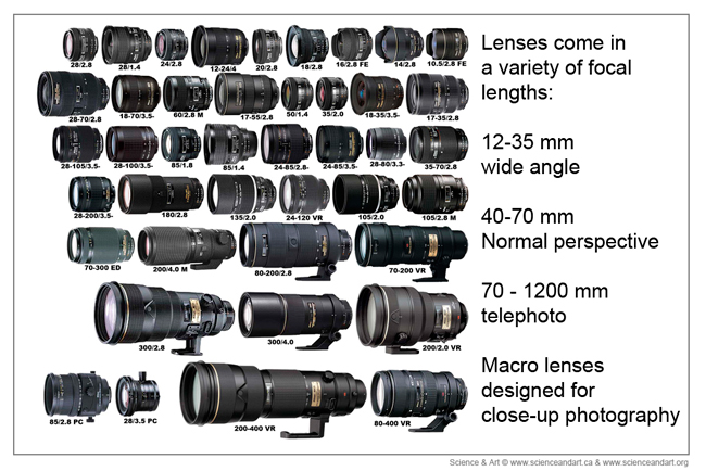 Nikon lens collection showing different focal lengths