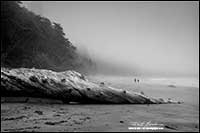 Black and white people walking on beach near Toffino Vancouver Island by Robert Berdan