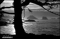 Black and white photo at sunrise of Broken Island Group Uclulet, Vancouver Island, British Columbia by Robert Berdan