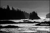 Black and white photo of boat returning to Uclulet harbour, Vancouver Island by Robert Berdan