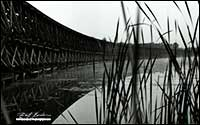 Black and white photo of Hog Bay Trestle 1972 Port McNicoll by Robert Berdan
