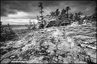 Black and white photo of Canadian Shield Killarney National Park Ontario by Robert Berdan