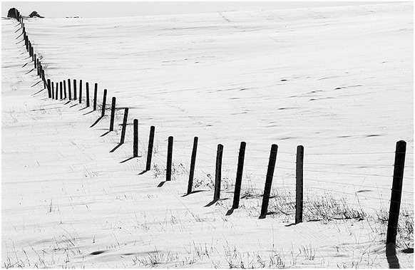 Winter scene with fence posts showing rhythm by Robert Berdan ©