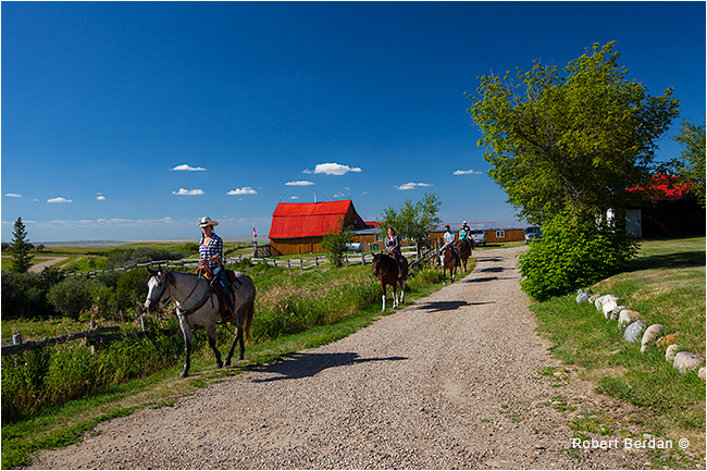 Reesor ranch guests riding horseback by Robert Berdan ©