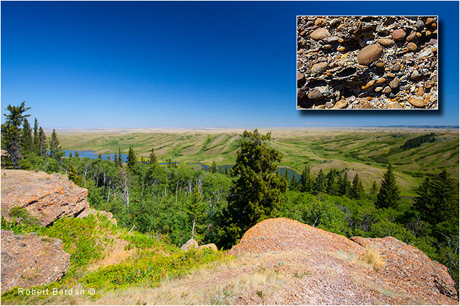 Comglomerate cliffs Cypress Hills by Robert Berdan ©