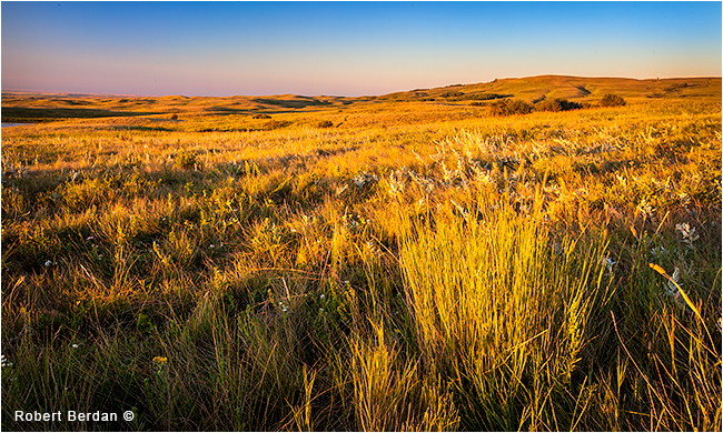 Prairies at sunset at Historic Reesor Ranch by Robert Berdan ©