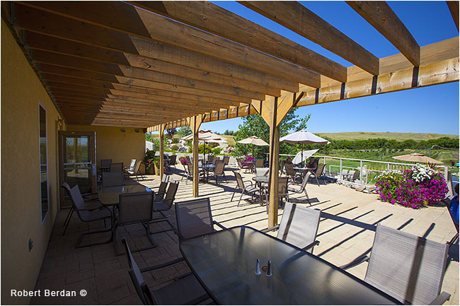 Cypress hills winery patio by Robert Berdan ©