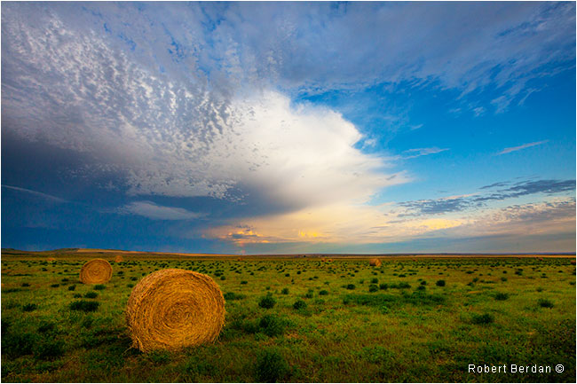 Hay bales along side Graburn road by Robert Berdan ©