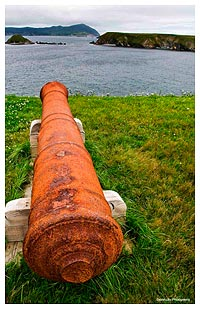 Old Canon Newfoundland by Dave Lilly ©