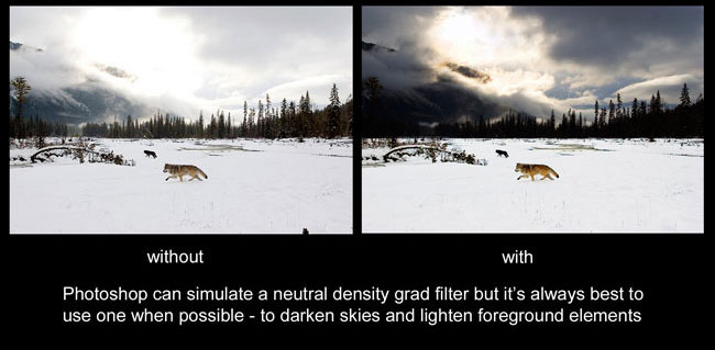 with and without a grad filter by Robert Berdan