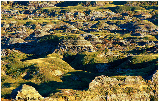 Badlands Alberta by Robert Berdan ©