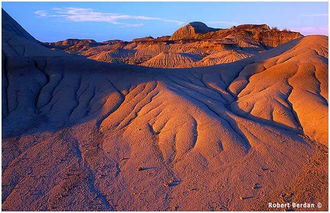 Evening light Dinosaur Provincail Park Alberta by Robert Berdan ©